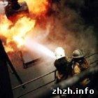 Житомирские пожарные вытащили из огня трех «любителей алкоголя»