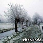 Житомир: Погода на выходные: в Житомире до 9° тепла