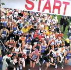 В Житомирі пройде Загальноукраїнський Олімпійский день бігу