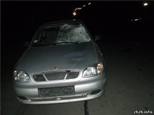 ДТП в Житомире. Насмерть сбил человека