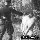 Общество: В Житомире найдены документы о массовых убийствах членами НКВД