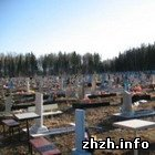 Общество: В Житомире самый низкий показатель смертности населения в области