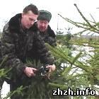 Житомирлес направил на ведение лесного хозяйства более 100 млн. грн.
