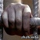 У Житомирі затримана банда автомобільних злодіїв-наркоманів