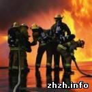 Играя с огнем, дети устроили 5 пожаров. Житомирское МЧС бьет тревогу
