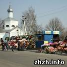 В Житомире открывают рынки по продаже искусственных цветов и убирают кладбища