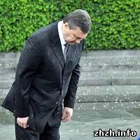 Происшествия: Венок неизвестного солдата прибил Януковича. ФОТО ВИДЕО ОБНОВЛЕНО