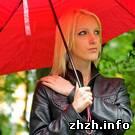Общество: «PhotoFun» провел в Житомире очередные встречи. ФОТО