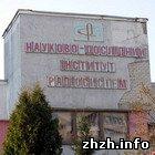Общество: Сотрудники института радиосистем в Житомире объявили голодовку. ФОТО