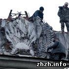 Общество: Сегодня в Житомире продолжили