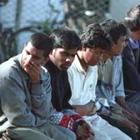 Криминал: В Житомирской области задержали нелегалов из Китая и Афганистана
