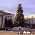 Житомир решил отказаться от новогодней елки на площади Соборной