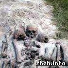 У Житомирській області знайшли останки п'ятьох червоноармійців. ФОТО