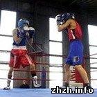 Спорт: На Житомирщине завершился турнир по боксу на призы Владимира Кличко