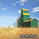 На житомирских хлебопредприятиях негде хранить зерно - Филимонов