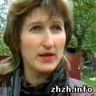 Происшествия: В Житомирской области учительница побила учеников. ФОТО