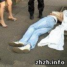На улице в Житомире скончался молодой мужчина. ФОТО не для слабонервных