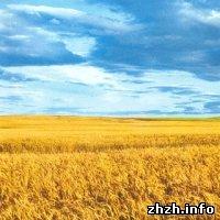 Культура: Украина отмечает главный национальный праздник - День Независимости