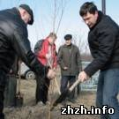 Мэр Житомира призывает на общегородскую весеннюю толоку