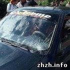 Происшествия: В центре Житомира водитель иномарки сбил пенсионера