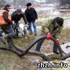 Происшествия: В Житомире ликвидируют аварию на магистральном водопроводе. ФОТО