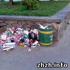 Жители частного сектора в Житомире создают стихийные мусоросвалки. ФОТО