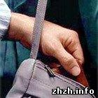 Криминал: В Житомире оперативники ищут в троллейбусах не молодую карманницу