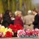 В Житомирской области найдены останки двух советских солдат