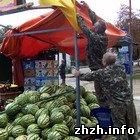 Экономика: В Житомире демонтировали незаконно установленный киоск с арбузами. ФОТО