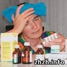 В Житомире уровень заболеваемости гриппом ниже среднего - Александр Шпита