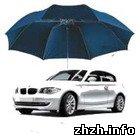 Экономика: Страховая компания выплатила автовладельцу из Житомира 50 тыс. грн.