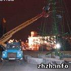 В Житомире начали устанавливать Новогоднюю елку. ФОТО