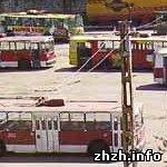 Житомир: Специалисты трамвайно-троллейбусного депо в Житомире занялись бизнесом