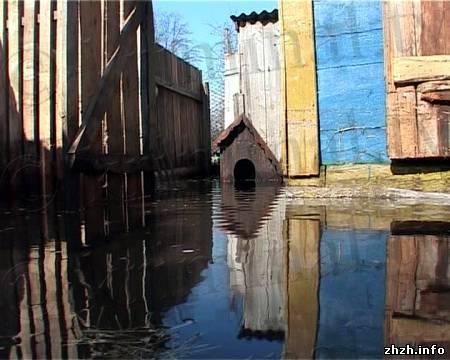 Под Коростенем оказались затоплены многие дома и огороды. ФОТО