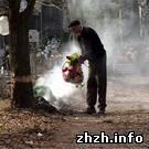 Общество: Жители Бердичева массово выбрасывают мусор на городское кладбище. ФОТО
