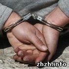 Підлітки вкрали більше 300 метрів кабелю в Житомирській області