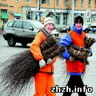 Житомир: В Житомире из-за погоды субботник перенесли на пятницу - 17 апреля