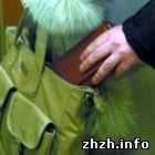 Криминал: Мошенники ограбили жительницу Житомира на 10 тыс. грн.