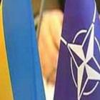 В Житомирі відбудуться навчання за стандартами НАТО