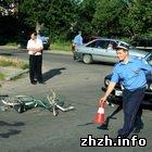 Происшествия: Под Житомиром водитель мотоцикла сбил велосипедиста и скрылся