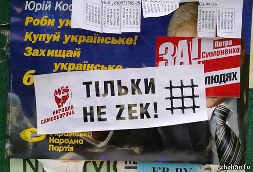 Орлы Луценко обклеили Житомир провокационными листовками «Тільки не зек». ФОТО