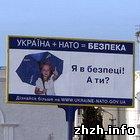 Армия: 30% жителей Житомирской области поддерживают вступление Украины в НАТО