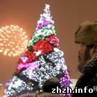 Новогодняя елка в центре Киева - радиоактивна