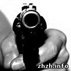 Происшествия: В Житомире из пневматического пистолета ранен 21-летний парень