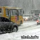 Житомир: В Житомире морозы парализовали движение маршруток и троллейбусов