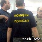 Наука: «Комары Полесья» представят Житомир на всеукраинских играх по Брейн-Рингу
