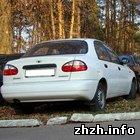 Криминал: В Житомире разоблачены махинации с кредитами и автомобилями. ФОТО