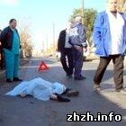 Происшествия: На Житомирщине грузовик насмерть сбил пешехода