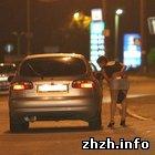 Общество: Под Житомиром задержаны 12 проституток возрастом от 17 до 44 лет