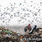 Школьников города Бердичева отвезли на полигон мусоросвалки. ФОТО